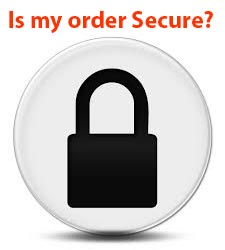 Read more about order processing security